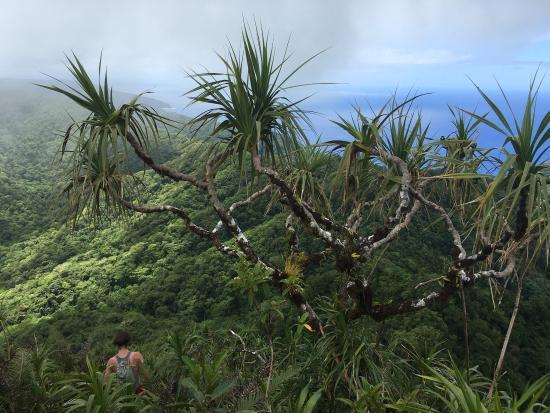 Tutuila, Samoa Americana: photo5.jpg