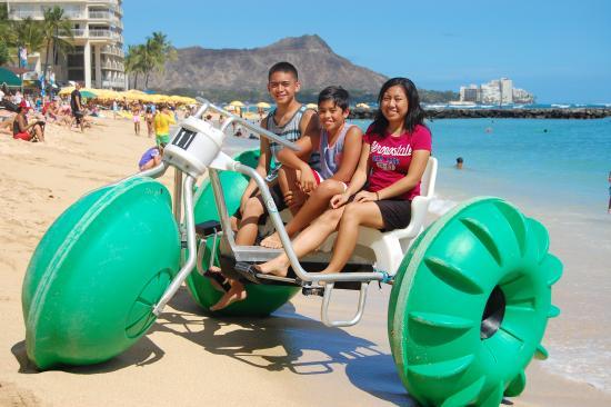 Koa Beach Service