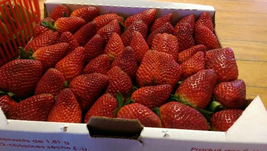 Somis, CA: Fabulous farm fresh produce, U -pick, pygmy goats, sheep, alpacas and chickens to entertain the