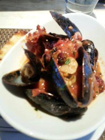 Jax Fish House & Oyster Bar: Mussels, lettuce wedge, spicy tuna