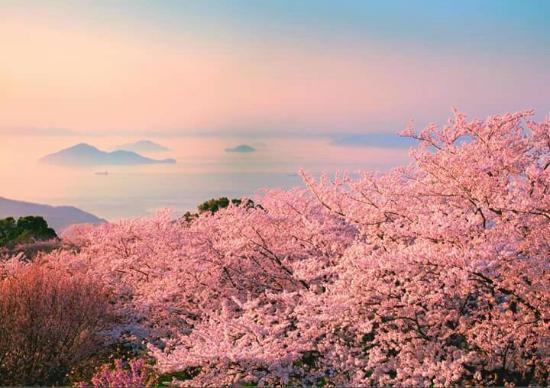 Resultado de imagem para Mt. Shiude