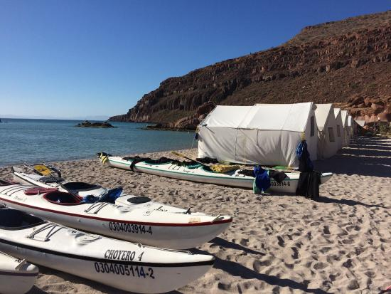 Sea of Cortez Adventures