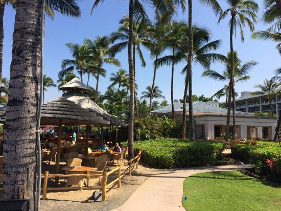 fairmont orchid february 2016 snorkeling in the lagoon and pictures rh tripadvisor com