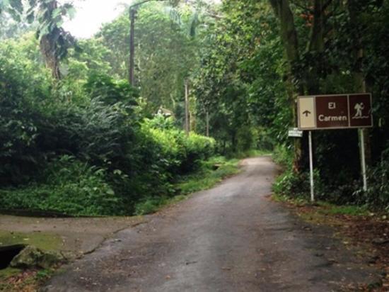 Villavicencio, Colombia: Ascenso hacia la Vereda El Carmen, un lugar lleno de naturaleza y vida.
