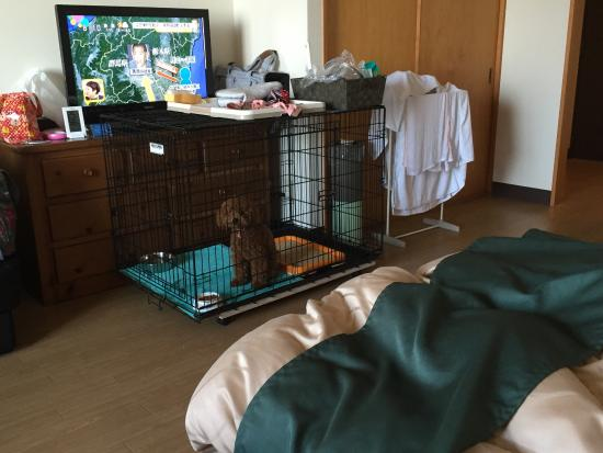 Pet & Spa Hotel Nasu-Wan