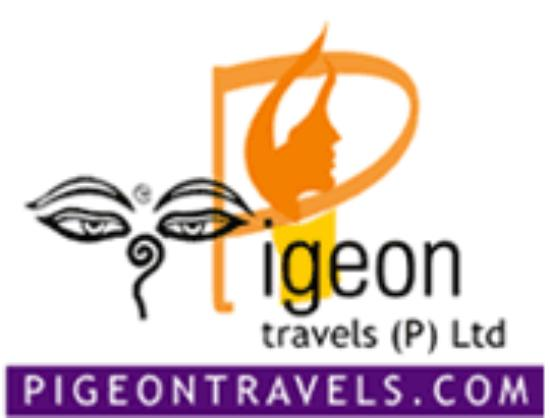 Pigeon Travels-Nepal