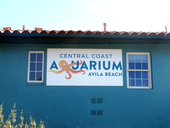 Central Coast Aquarium, Avila Beach, Ca