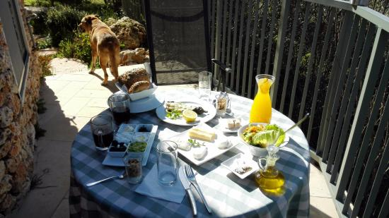 Tur Sinai Organic Farm Resort: Israeli breakfast on the balcony