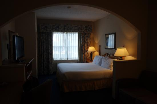 Holiday Inn Express & Suites Dallas-Addison: Room