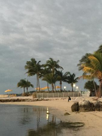 postcard inn islamorada picture of postcard inn beach resort rh tripadvisor ie
