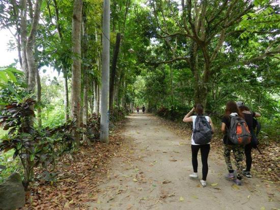 Mt Banahaw: I don't know what part it is ( i actually don't remember it) but it was fun.