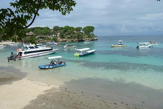 dsc06903 large jpg picture of hai tide beach resort nusa rh tripadvisor com au
