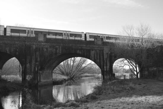 Hambrook Marshes: train going by
