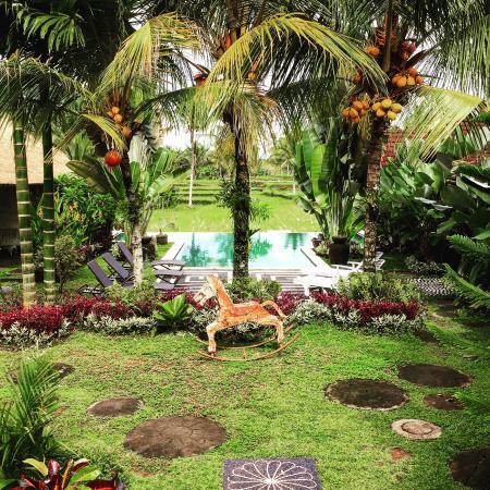Hati Padi Cottages: photo1.jpg