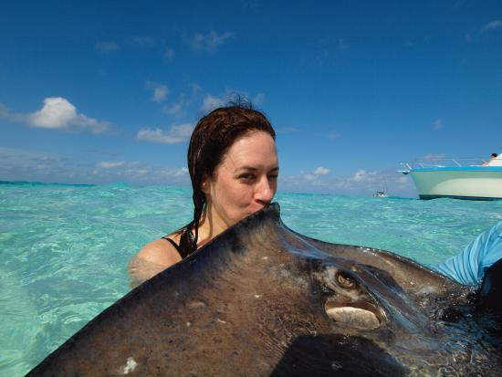George Town, Gran Caimán: Kissing the stingray
