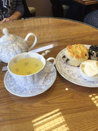 Bluebell Tea Room