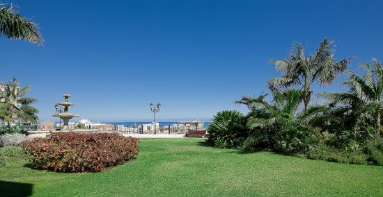 Hotel El Tope: Garden
