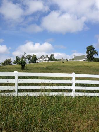 Whitestone Country Inn: photo0.jpg