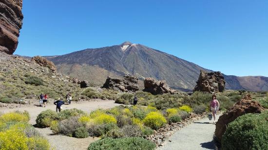 turismo e turisti Volcan-el-teide