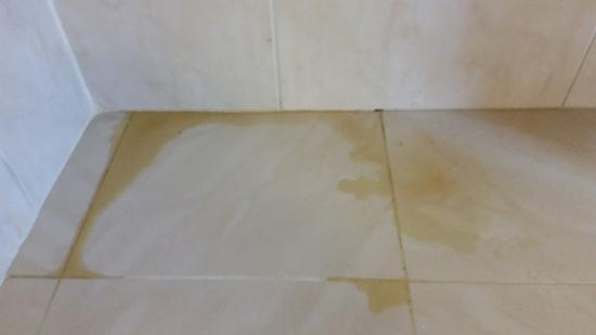 Dusche Decke Schimmel : Schimmel Decke – Bild von Grand Palladium Punta Cana Resort & Spa