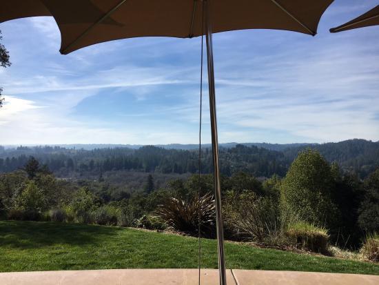 Gary Farrell Winery: Gary Farrell view