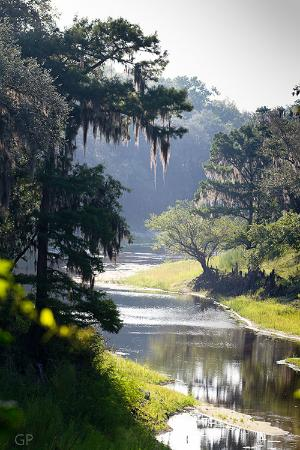 ‪‪Live Oak‬, فلوريدا: Historic Suwannee River‬