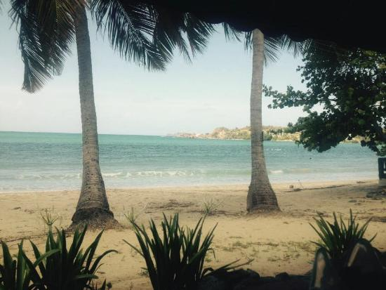 Island Beachcomber Hotel: This is the view from our room's patio.