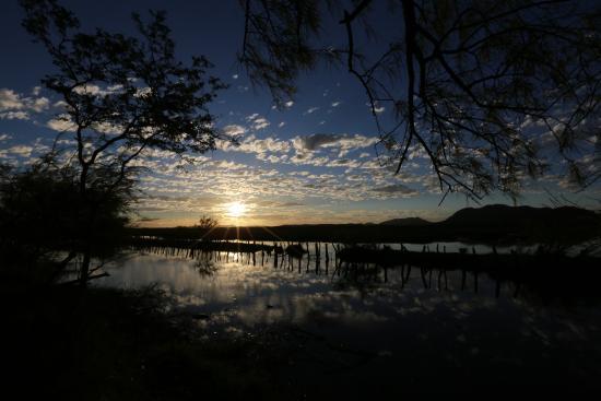 Nicoya, Kosta Rika: Wetland Guanacaste