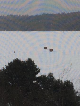 The Lake Inn at Mt. Sunapee: photo0.jpg