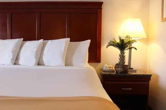 Hotel E Real: King Bed
