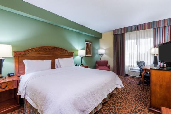 Hampton Inn West Palm Beach Central Airport: King Guest Room
