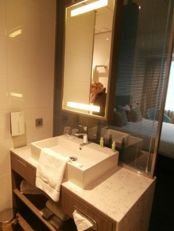 Golden Tulip Leiden Centre : Le coin salle de bain