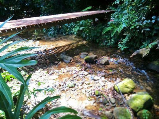 Sumatra Ecolodge