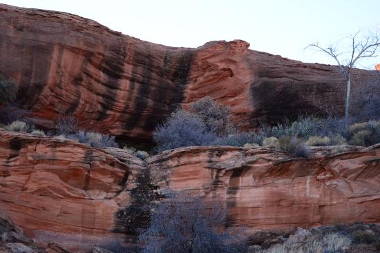 Great easy hike in Page Arizona Review of Hanging Gardens Trail