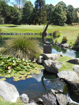 Playing Around New Zealand : Wairakei International Golf Course