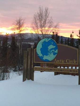 Alaskan Arctic Turtle Tours