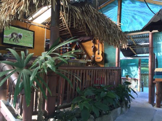 Cabanas Campo 3