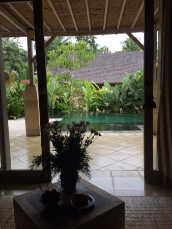 view from room to pool picture of wapa di ume ubud ubud tripadvisor rh tripadvisor com au