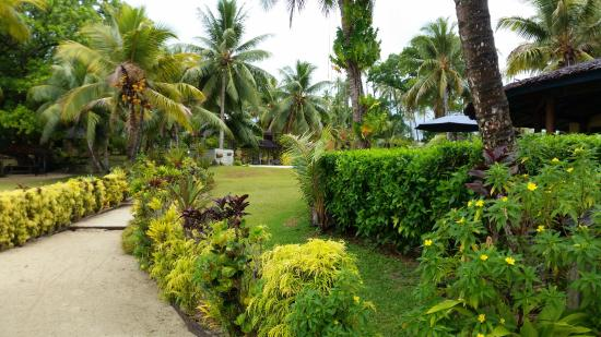 Aore Island, Vanuatu : Pathway from dining area leading to bungalows