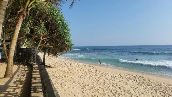 Dalawella Beach Resort: 20160214_161342_large.jpg