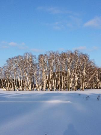 Serebryany Bor: Зимняя красота