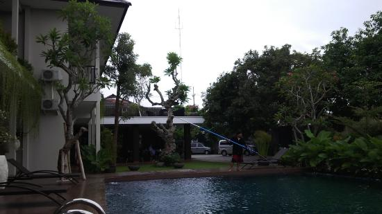 kamar yang view kolam renang bild von doho homestay jember rh tripadvisor de