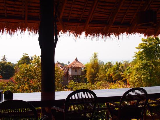 vue depuis la terrasse du restaurant picture of tree top bungalows rh tripadvisor com
