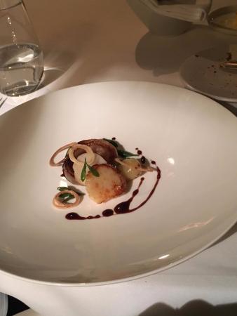 Scallop, Roscoff onion, red wine