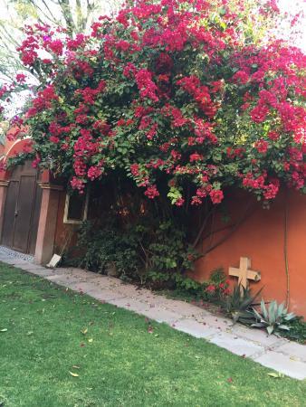 Casa de la O: photo0.jpg