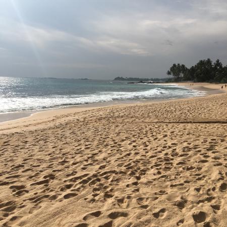 Dalawella Beach Resort: photo1.jpg