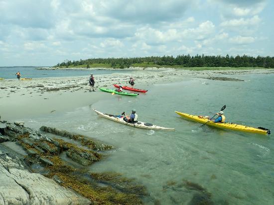 Kayak Tours Atlantic Canada