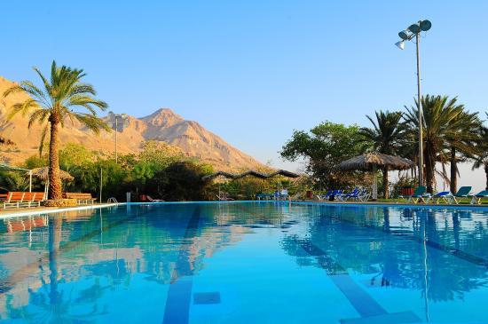 Ein Gedi Hotel : Hotel Swimming Pool