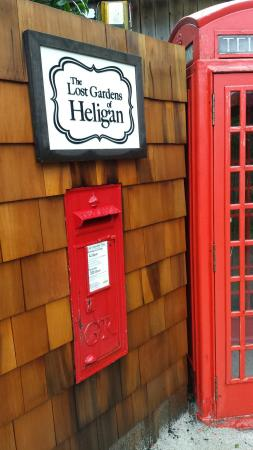 Heligan Kitchen & Bakery: 20160217_141857_large.jpg