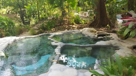 Our Hot Spring Ponds - Picture of Wareerak Hot Spring Spa ...